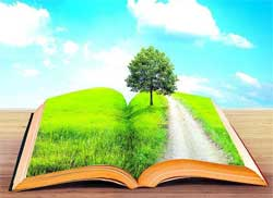 那些可以提高情商、判断和沟通能力的书籍