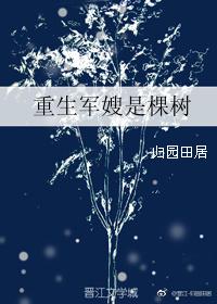 《重生军嫂是棵树》作者:归园田居  现代种田小说,发家致富温馨养家