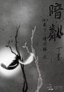 《他来了请闭眼之暗粼》作者:丁墨  现代推理言情小说