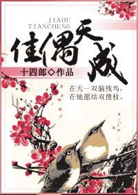 《佳偶天成》作者:十四郎丨奇幻搞笑言情小说,克夫少女&深情战鬼