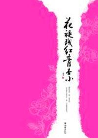 《花褪残红青杏小》作者:南适丨穿越古言小说,现实向,感情描写赞