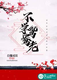 《不学鸳鸯老》作者:白鹭成双丨古言,腹黑傲娇公子&前朝复仇公主,破镜重圆梗