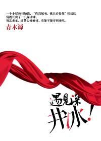 《遇见深井冰》作者:青木源丨古言穿越,南北朝鲜卑族,姐弟恋