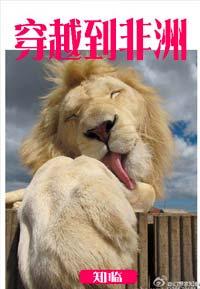 《穿越到非洲》作者:知临丨无cp,女主非洲保护野生动物,一人一狮一猎豹称霸日常