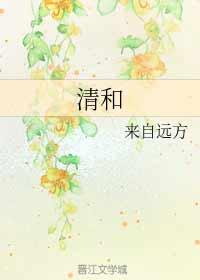 《清和》作者:来自远方丨穿越耽美小说,小人物在明初的奋斗史