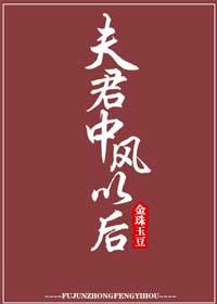 《夫君中风以后》作者:金珠玉豆丨夫妻双重生,重新相爱破镜重圆