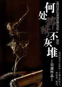 《何处锦绣不灰堆》作者:司溟丨小火慢炖的现代爱情,破镜重圆