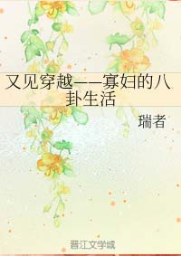 《又见穿越——寡妇的八卦生活》作者:瑞者丨叔嫂恋,种田风,在宋朝替亡夫养萌娃